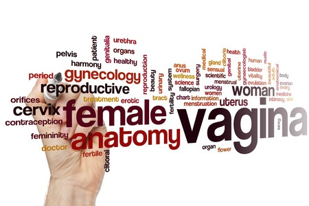 Sex Question Friday: How Deep Is The Average Vagina?