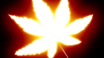 Sex Question Friday: Is Marijuana An Aphrodisiac?