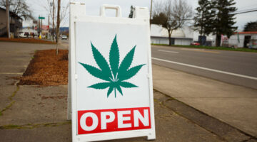 Medical Marijuana Laws are Linked to Increases in Sexual Activity and Birth Rates