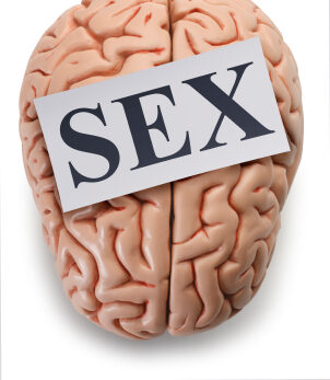 """Some People's Brains May Be """"Wired"""" To Seek More Sex"""